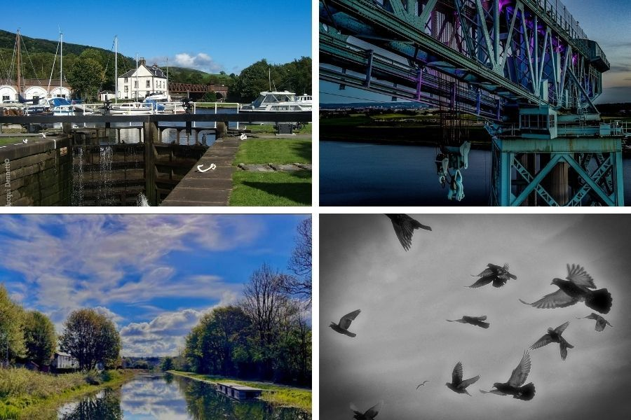 Clydebank Post Camera Club: Pick of the pics: June 9 edition