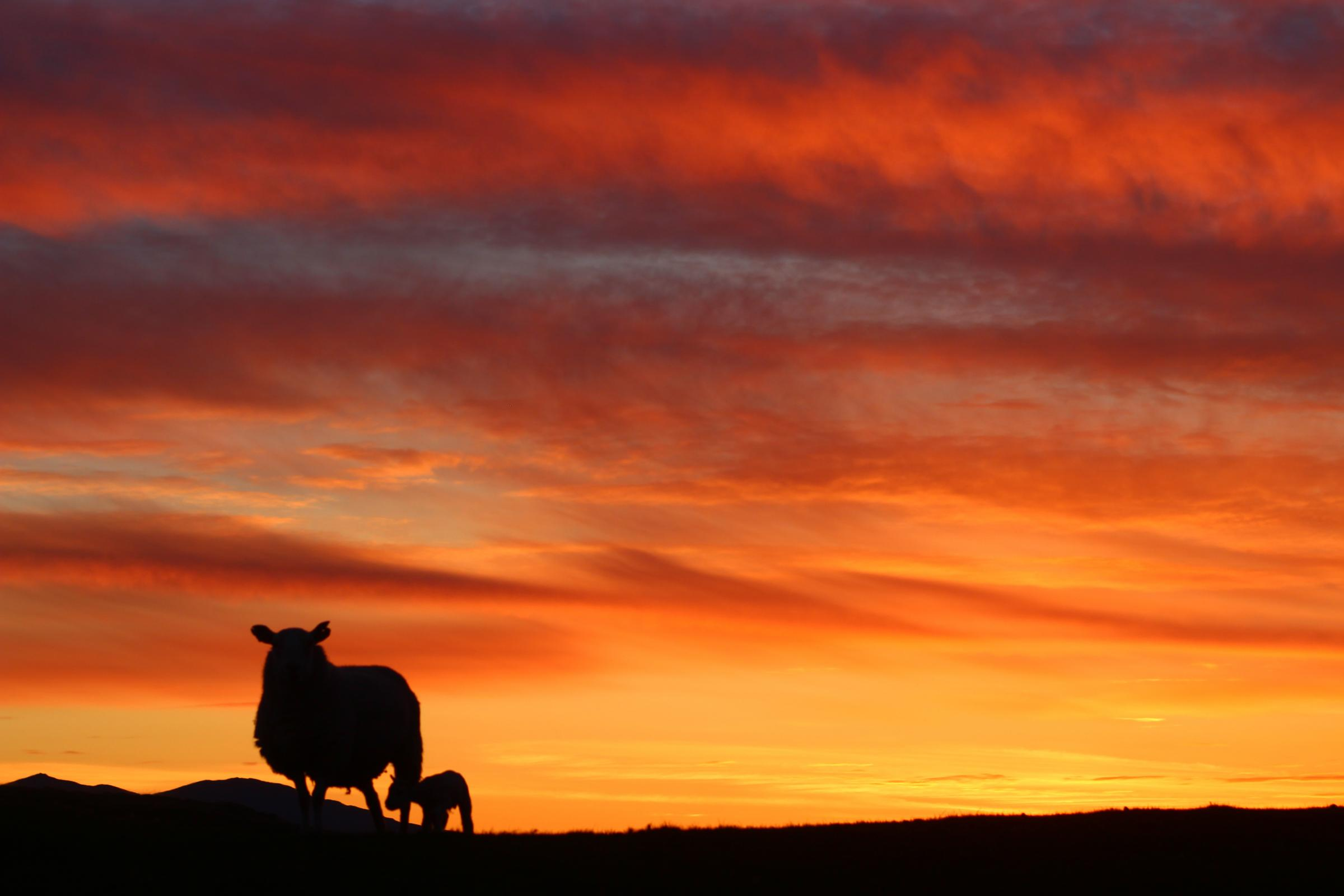 Summer solstice: What is it and when will the sun set in Scotland?